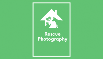 Rescue Photography